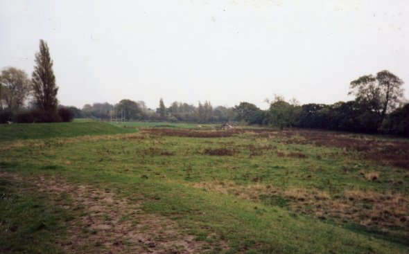 What the meadow looked like in 1991