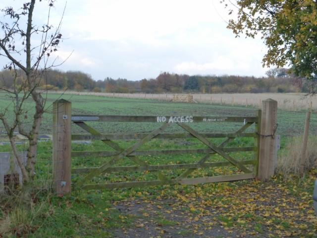Cornfield gate 19112014