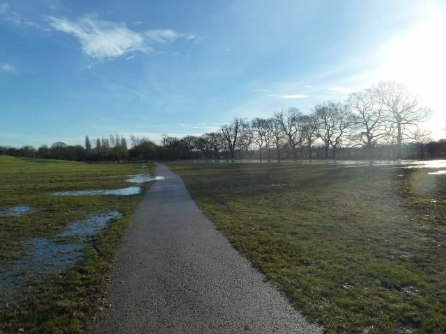Ridge & Furrow Meadow