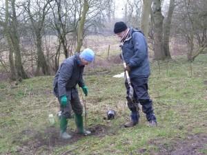 Planting the elms (1024x768)