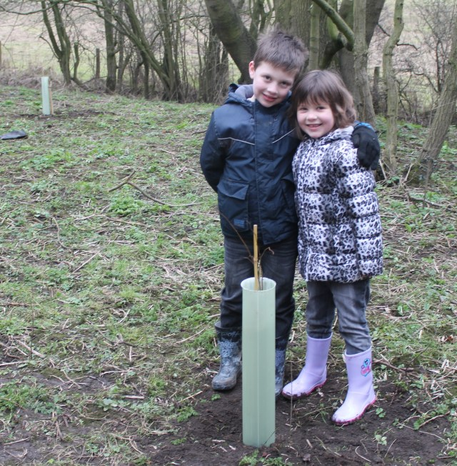 Jacob & Frances planting elm trees
