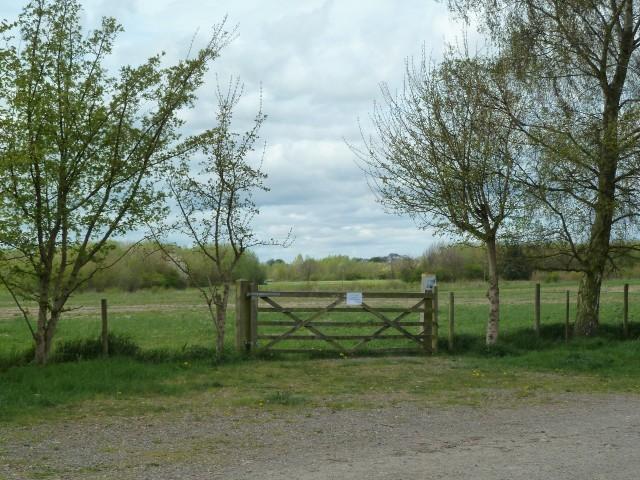 Cornfield Gate