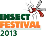 Insect Festival 2013