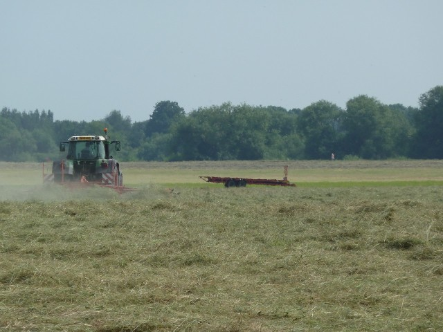 Hay turning on Clifton Ings