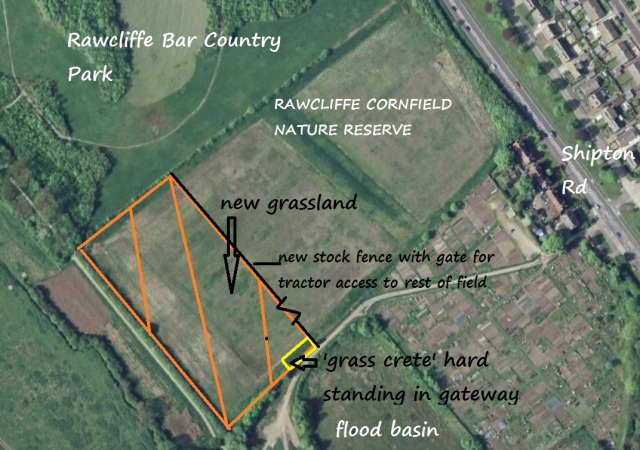Rawcliffe Cornfield proposed changes