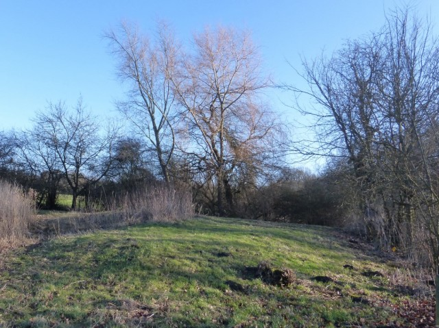 Southern Pond Mound
