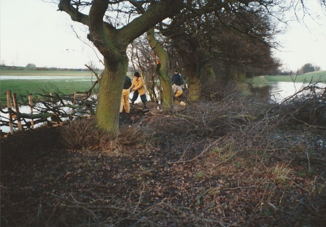 RM Hedgelaying 1994 2