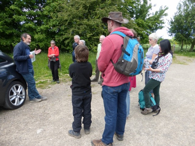 Tansy Beetle Tour 1