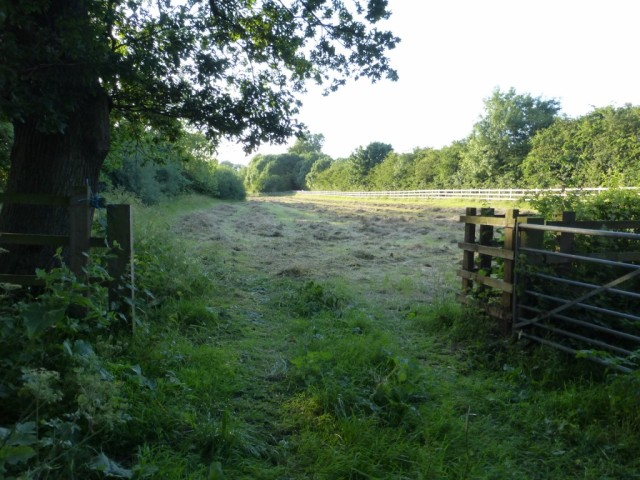 Copse Meadow with hay cut