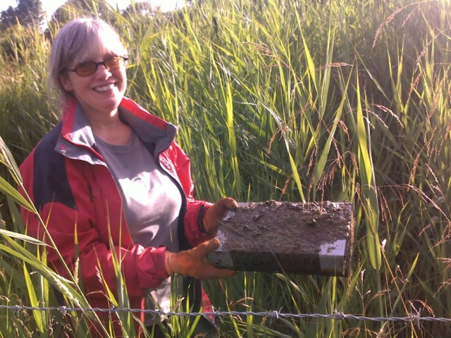 Ann with the huge water vole latrine on a raft