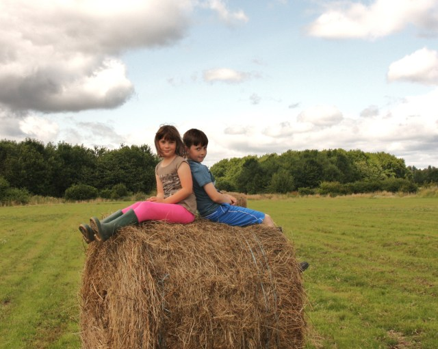 Jacob & Francis 'unrolling' a bale