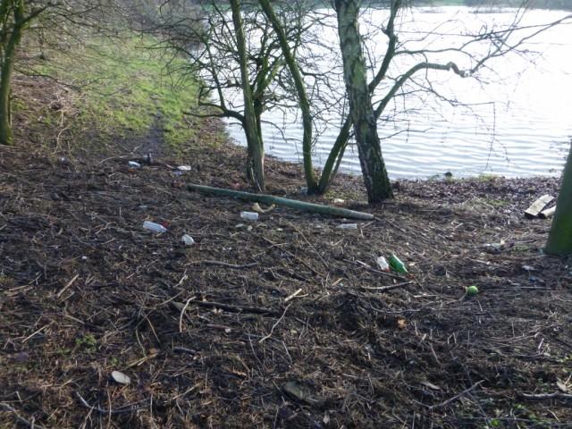 Flood debris 8 Jan 2016