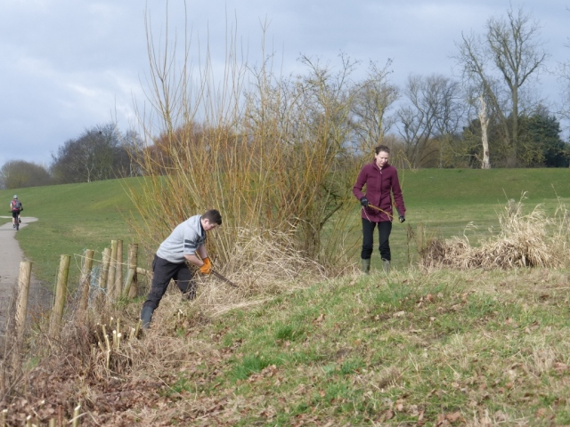 Ben and Nadine Coppicing
